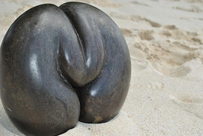 Кокосы коко-де-мер часто находят на пляжах.