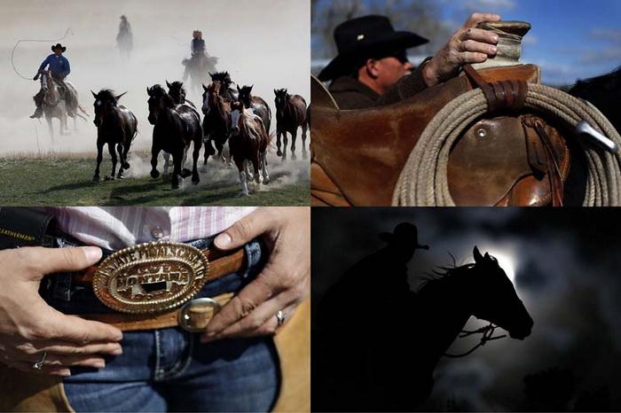 Современные ковбои из штата Монтана