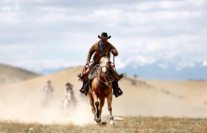 Перегоняя лошадей, ковбои преодолевают расстояние в 55 км