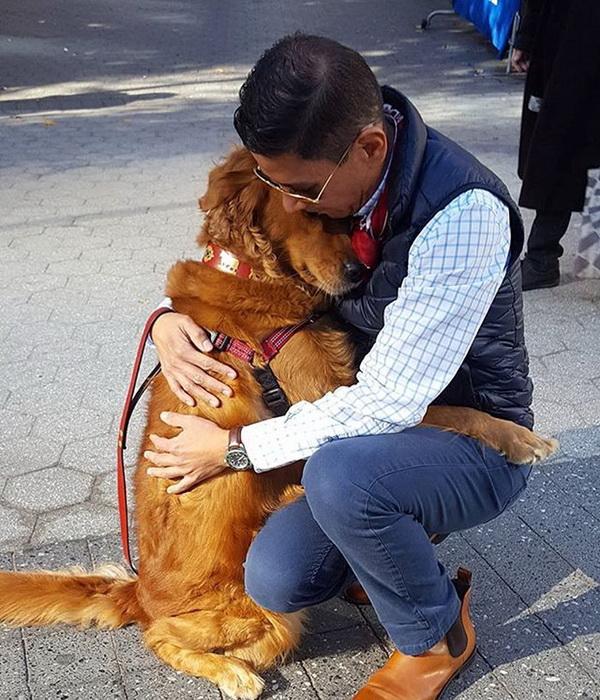 Собака которая очень любит обниматься живет в Нью-Йорке