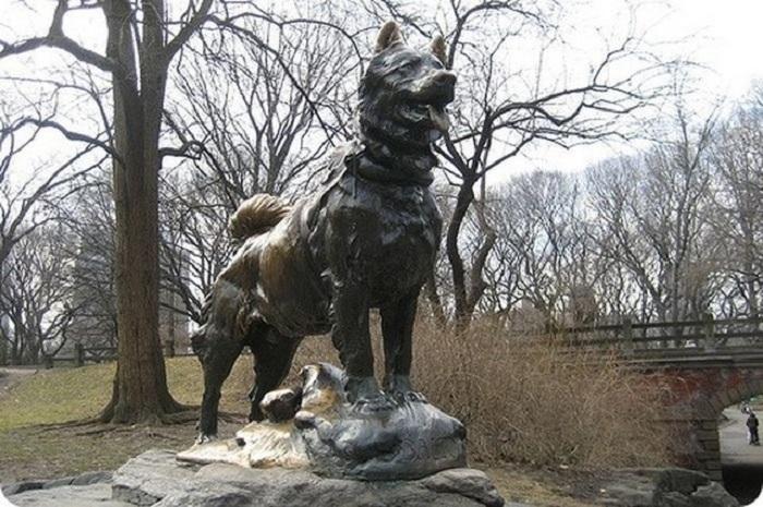 Памятник Балто в Центральном парке в Нью-Йорке.