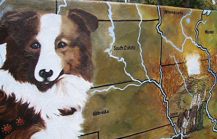 Пес Бобби из США.