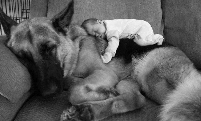 Когда малыш под надежной защитой. Фото: komotoz.ru