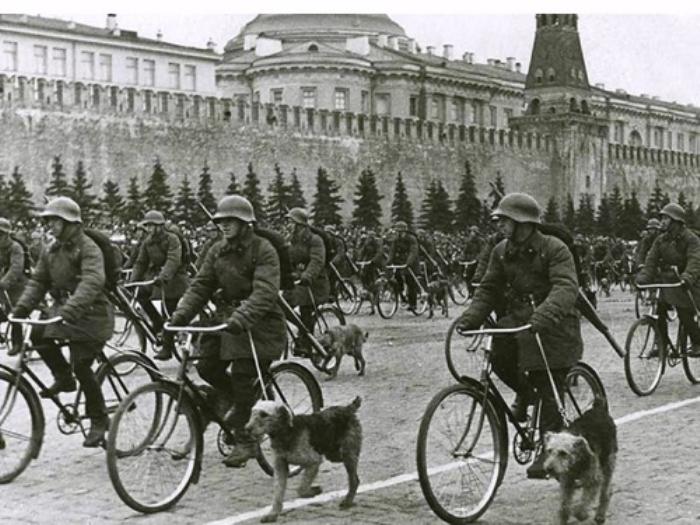 Собаки - полноценные участники войны. Парад на Красной площади. Москва, 1 мая 1938 г. Фото: ru.wikipedia.org