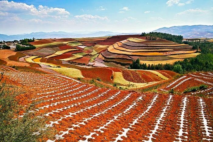 Разноцветные поля Дончуаня (Dongchuan), Китай