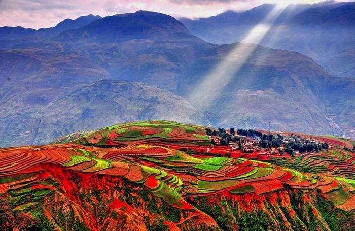 Яркие краски на полях Дончуаня (Dongchuan)