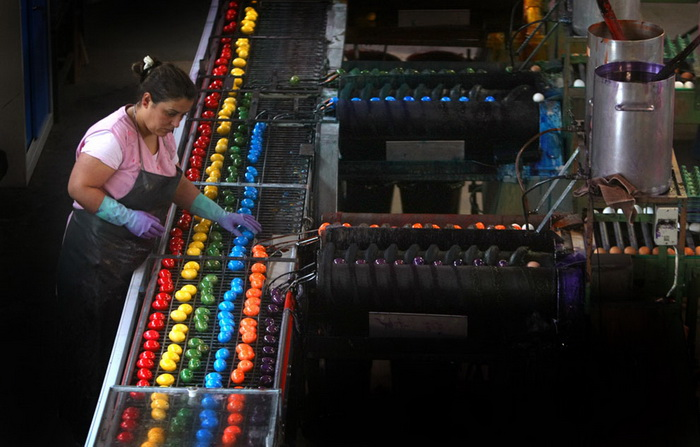 Германия. На фабрике в Танхаузене ежедневно красят около 180 тысяч сваренных вкрутую яиц