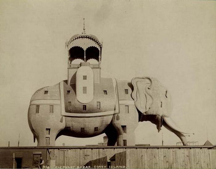 Слон в Кони-Айленд