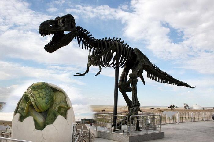 На территории современного Эренхота обитало 20 видов динозавров