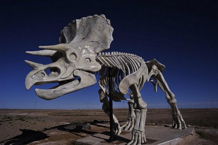 Эренхот знаменит археологическими раскопками останков динозавров