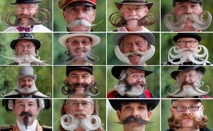 Многообразие форм: Чемпионат бороды и усов во Франции