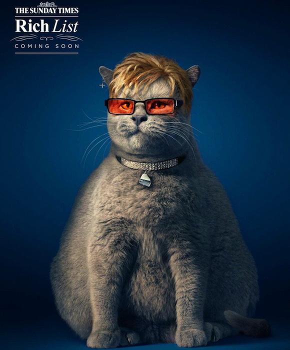Жирные коты: пародийный проект от издания The Sunday Times