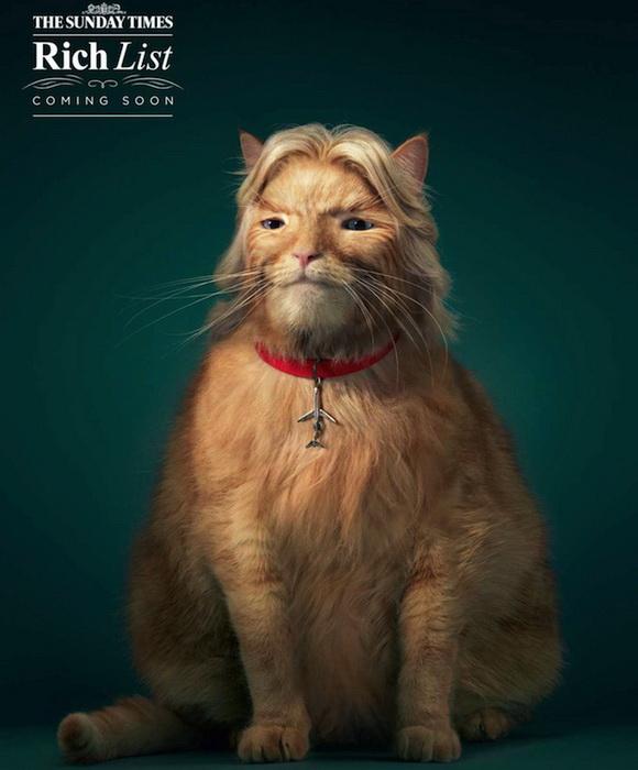 Жирные коты