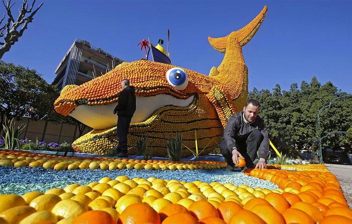 Для фестиваля понадобилось 145 тонн цитрусовых