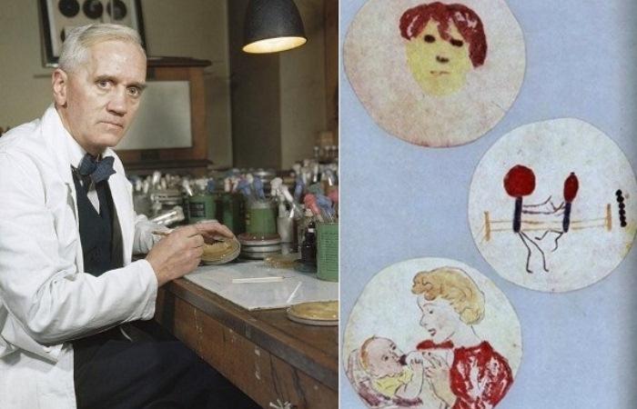 Александр Флеминг и его *биологические рисунки*.