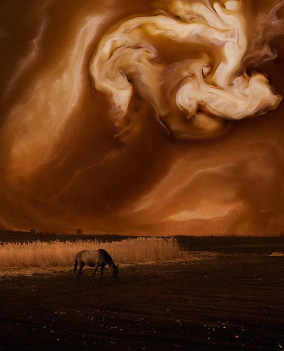 Кофейная Вселенная: фотографии от Флоры Борси (Flora Borsi)