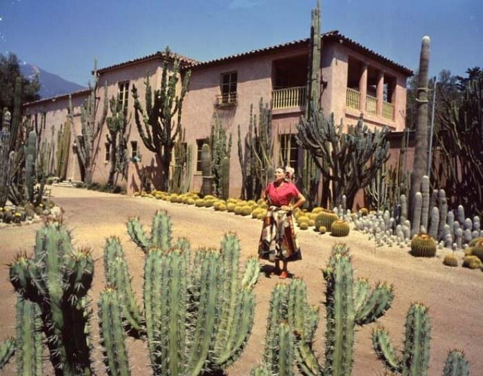 Розовый дом и мексиканский пейзаж.