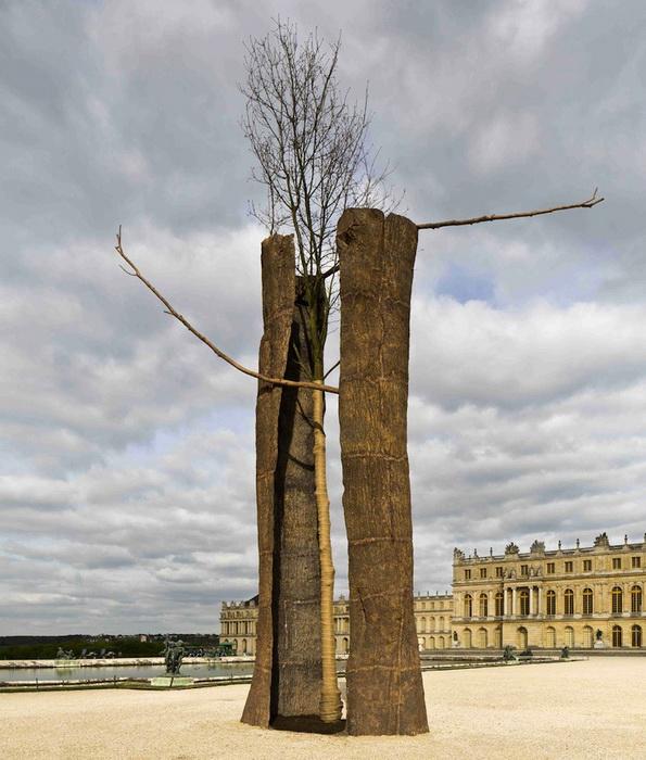 Деревянные скульптуры от Джузеппе Пеноне в Версале