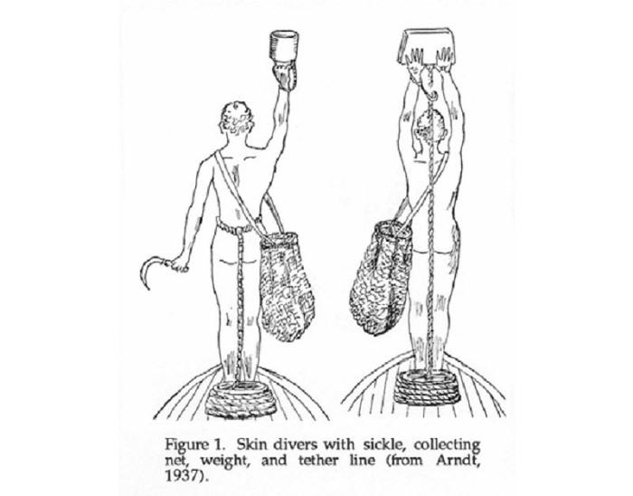 Ныряльщики, которые погружались без одежды и с тяжелым весом