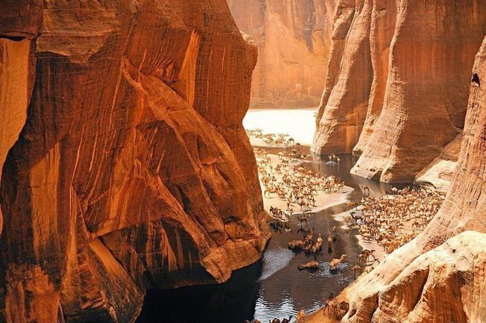 Гельта д'Аршей (Guelta d'Archei) – живописный оазис в пустыне Сахара