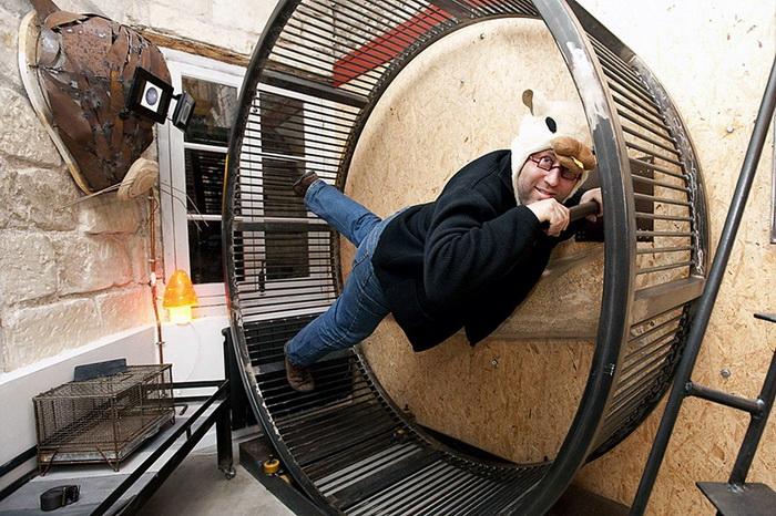 Постояльцы необычной гостиницы «Вилла хомяка» (La Villa Hamster)столкнутся со всеми трудностями жизни грызунов