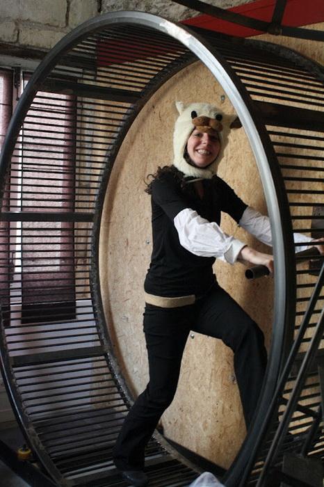 Колесо - отличная альтернатива спортзалу в необычной гостинице «Вилла хомяка»