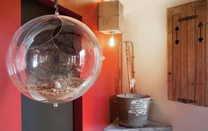 Необычная гостиница «Вилла хомяка» - шанс прожить один день из жизни Вашего любимца