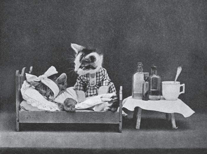 Первый снимок Harry Whittier Frees сделал в 1906 году