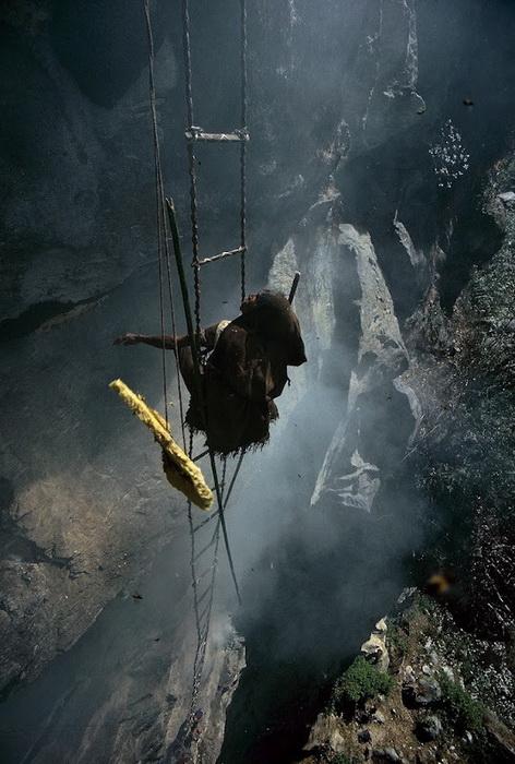 Охотники за медом бесстрашно балансируют над глубокими ущельями, откалывая соты с медом