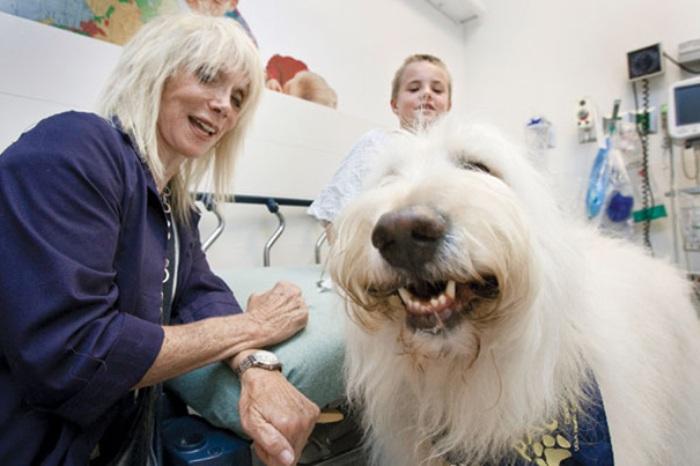 В канадской больнице тяжелобольным пациентам разрешены встречи со своими питомцами