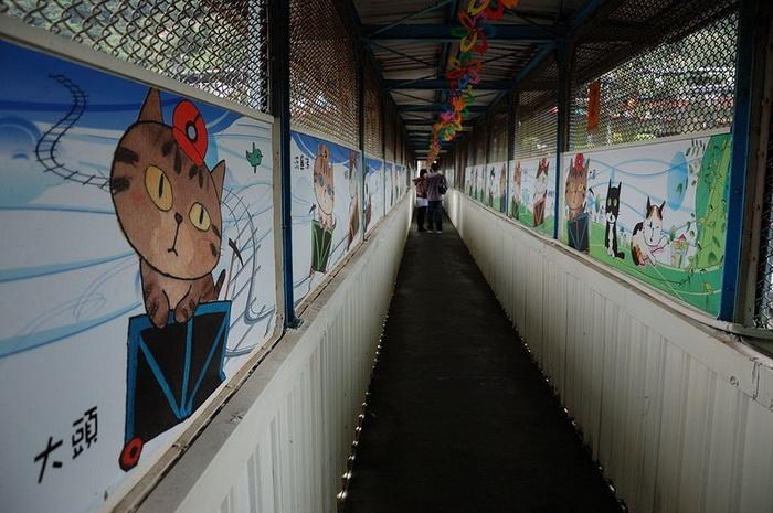 Мост в кошачьем стиле