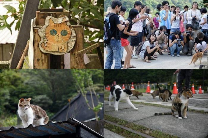 Houtong - кошачья деревня в Тайване