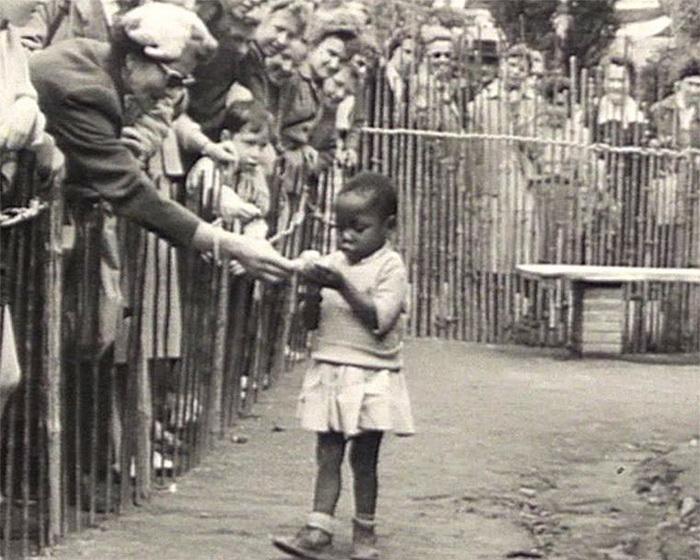 Конголезская деревня, зоопарк в Европе, 1958 год