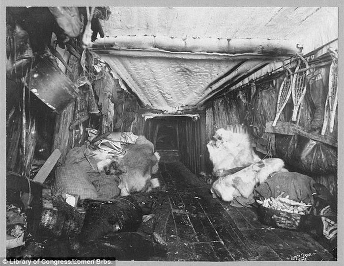 Жилище инуитов: деревянный пол и шкуры животных