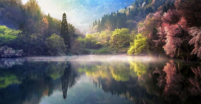 Фантастические картинки природы и цветов