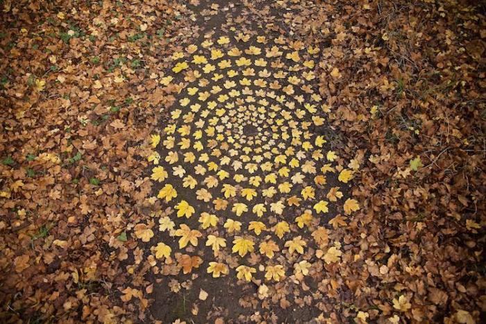 Ленд-арт из опавших листьев.