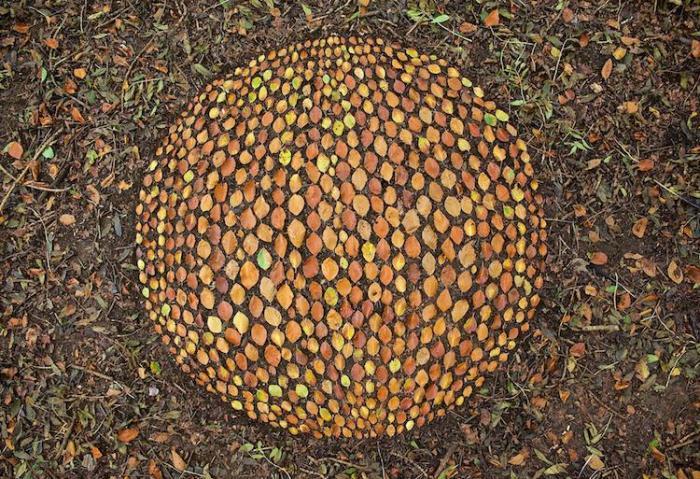 Объемный арт-артобъект из разноцветных листьев.