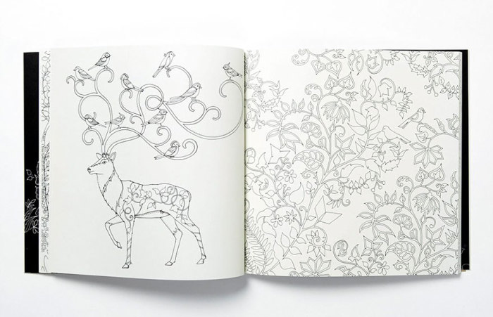 Умопомрачительные рисунки Джоанны Басфорд в раскраске для взрослых