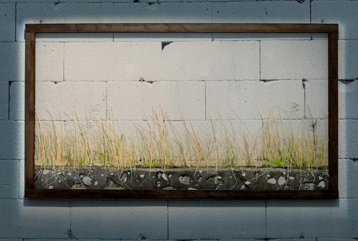 Работы Йоханнеса Хелдена, вдохновленные природой