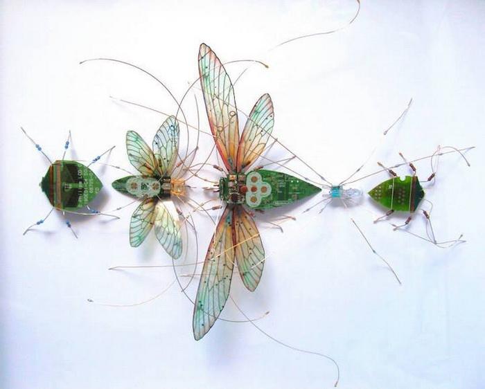 Очаровательные миниатюрные бабочки. Работы Джулии Элис Чаппелл (Julie Alice Chappell)