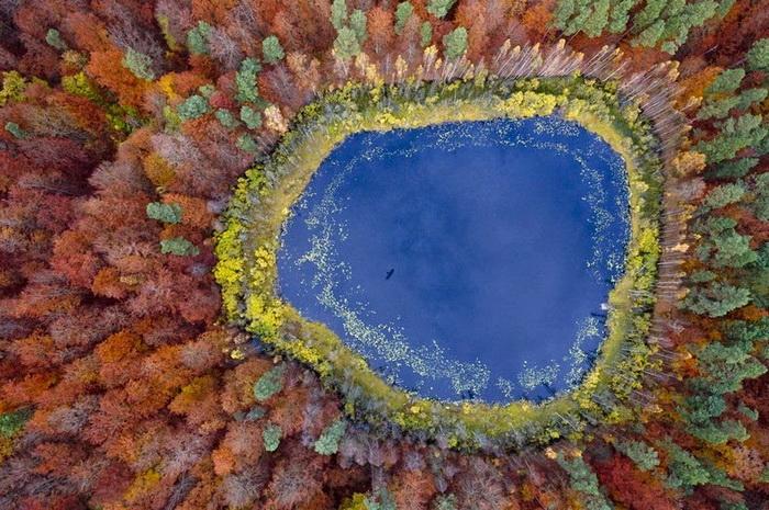 Озеро, окруженное деревьями. Аэрофотография от Каспера Ковальски (Kacper Kowalski)