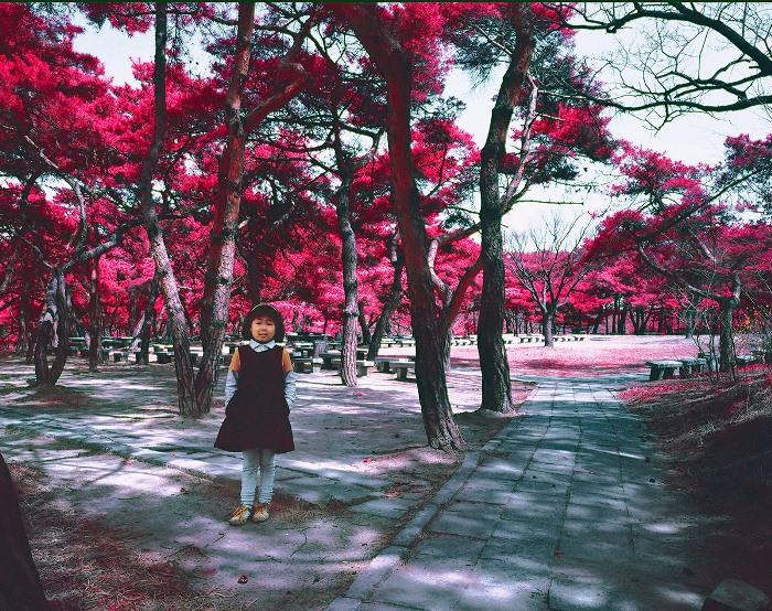 Девочка в парке.