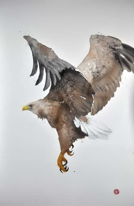 Птицы на акварелях Карла Мартенса (Karl Martens)