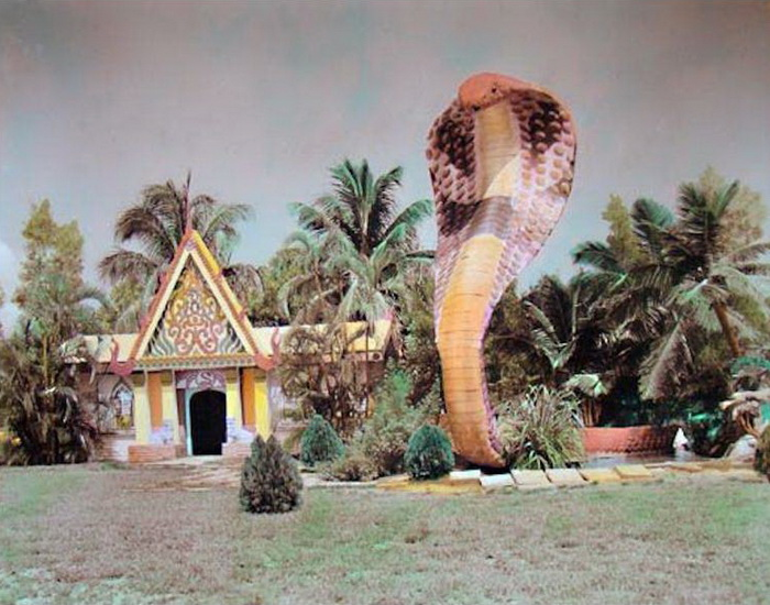 Гигантская розовая кобра у входа в серпентарий.