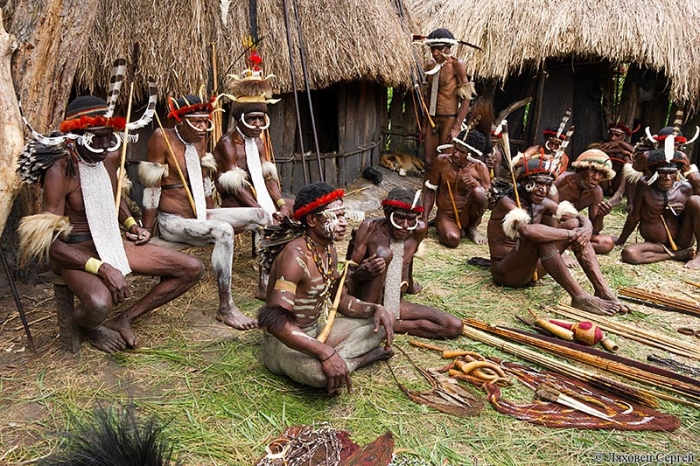 Дикое племя куку-куку