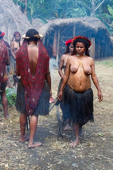 Будни племени куку-куку