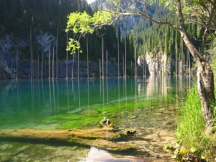 Озеро Кaindy в Казахстане