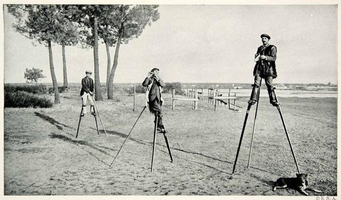 Пастухи из Ланда в начале XIX века передвигались исключительно на ходулях.