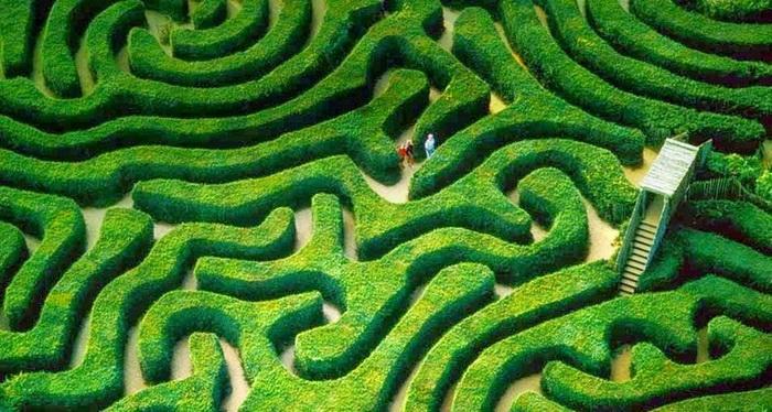 Зеленый лабиринт Longleat Hedge в Англии