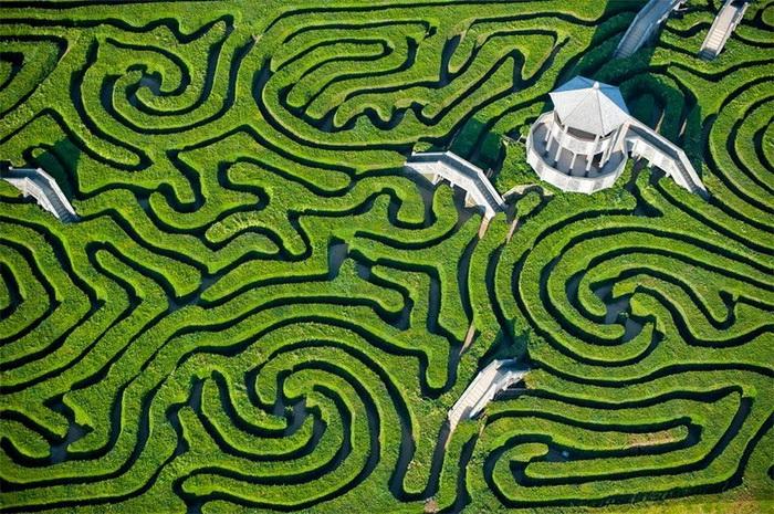 Longleat Hedge: самый длинный в мире зеленый лабиринт